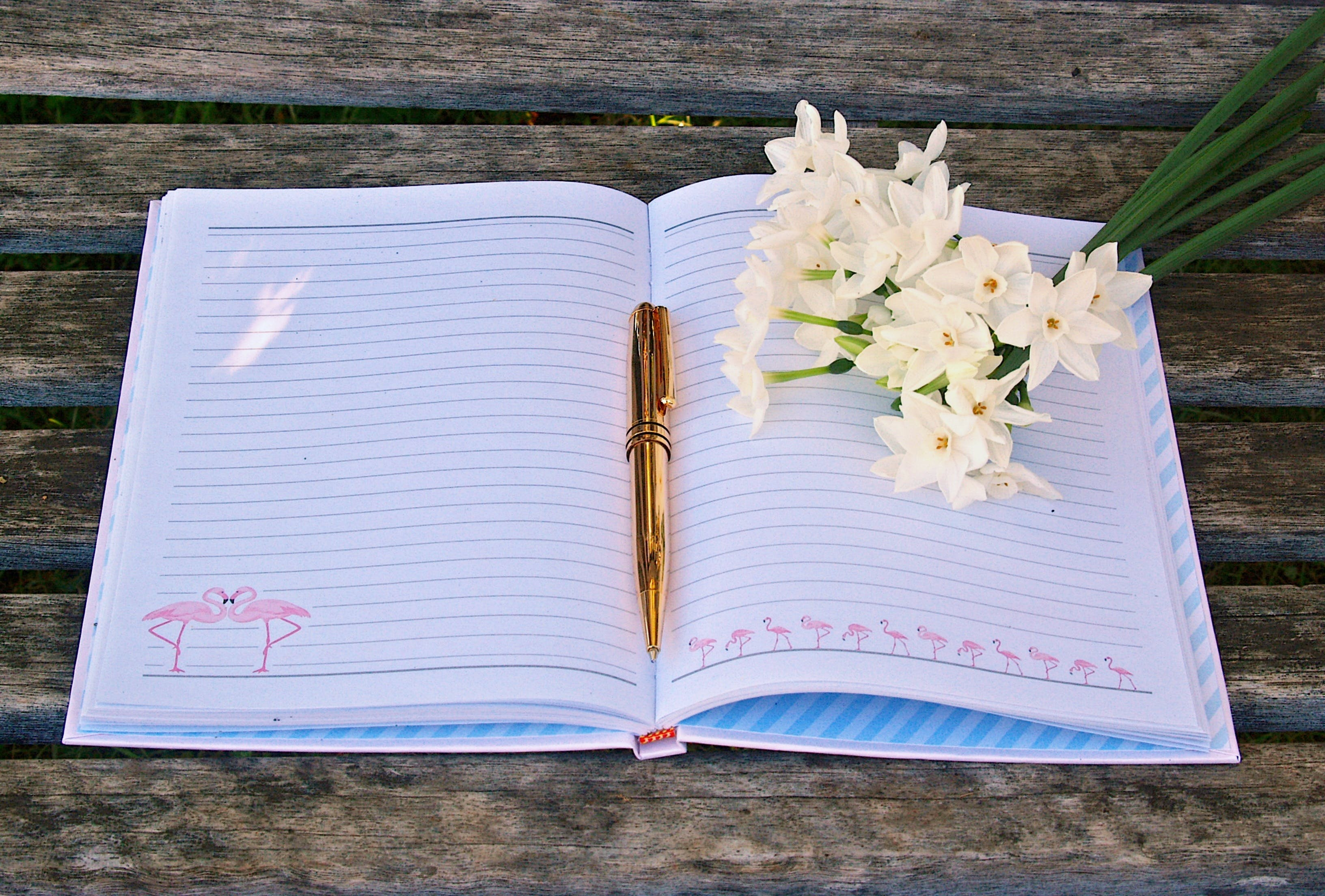 Free stock photo of creative, flowers, notebook, pen