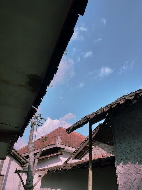 Fotobanka sbezplatnými fotkami na tému leto, modrá obloha, obloha, outdoorová výzva