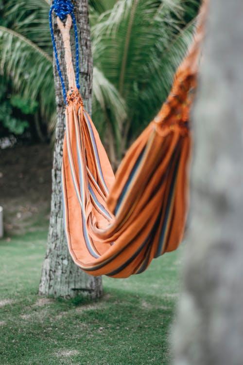 Photos gratuites de hamac, pale de ventilateur, palmier, rouge