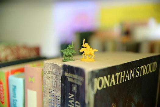Free stock photo of books, attraction, idea, fun
