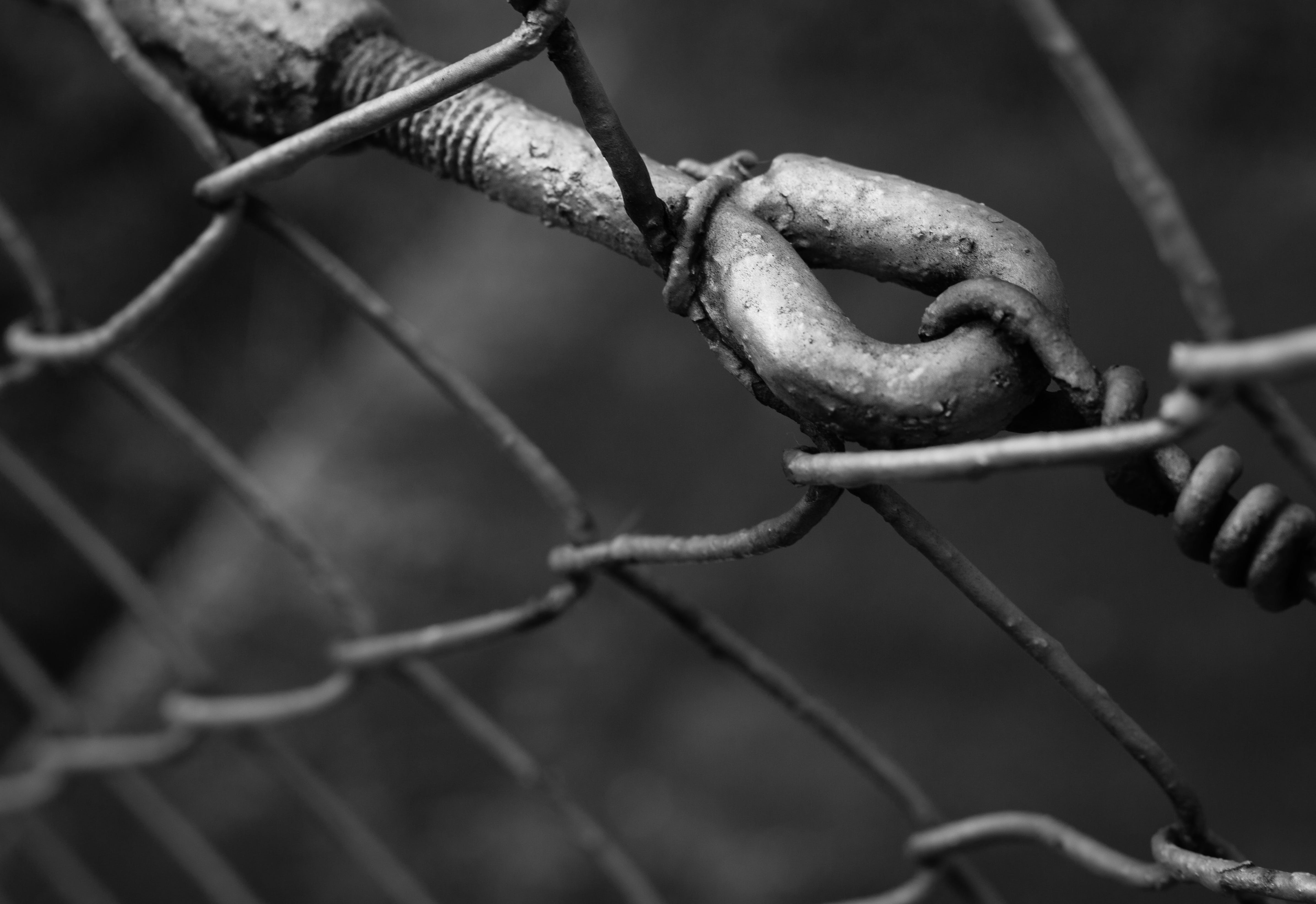 Free stock photo of architecture, atmosphere, barbed wire, barrier