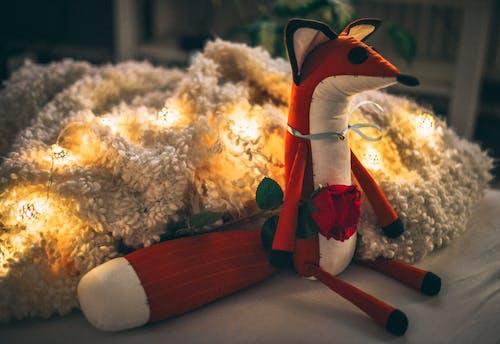 귀여운, 붉은 장미, 여우의 무료 스톡 사진