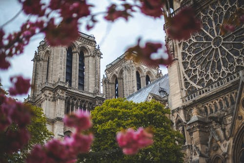 Low-Angle Photo of Notre Dame