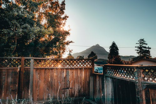 Free stock photo of fence, outdoors