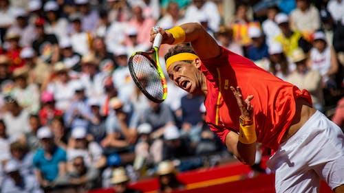 Fotobanka sbezplatnými fotkami na tému tenis, tenisový zápas, Valencia