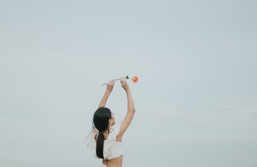 Základová fotografie zdarma na téma dáma, dospělý, držení těla, flóra