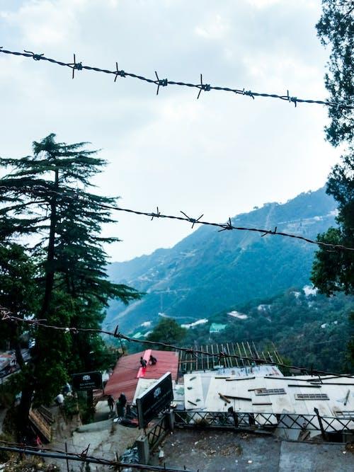 Immagine gratuita di alberi, città, colline, dehradun
