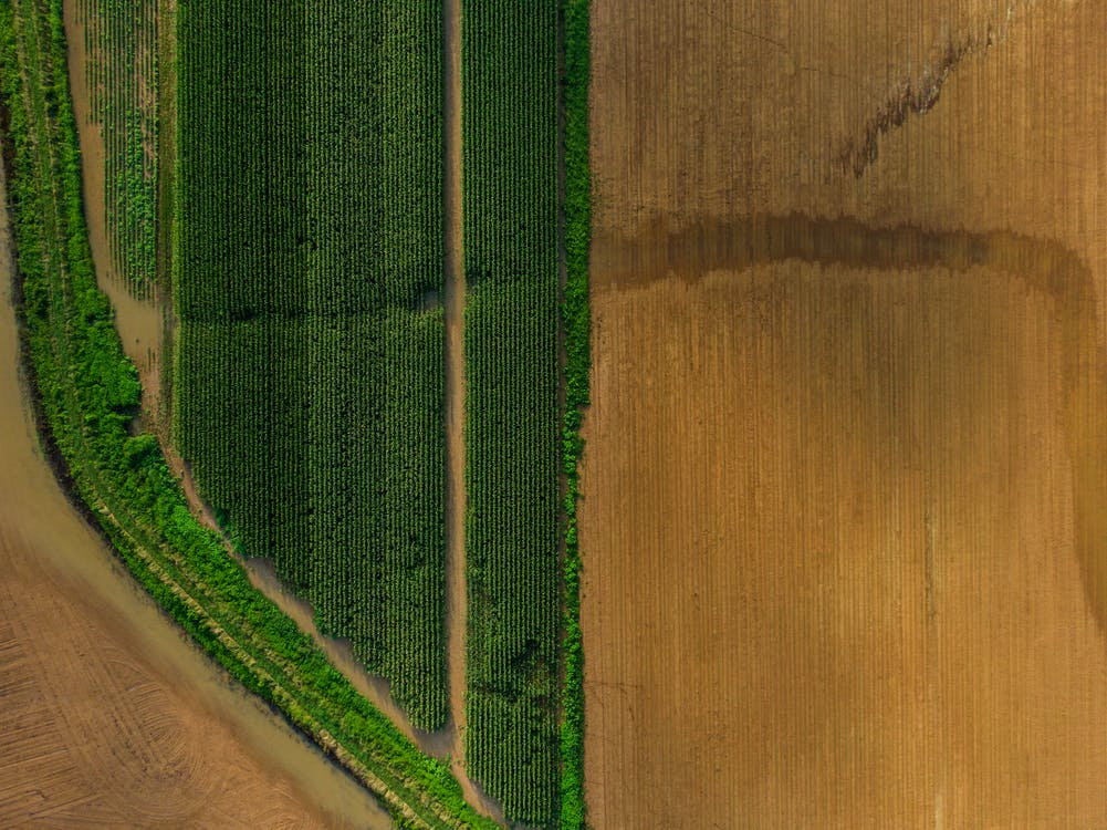 above, aerial, agriculture