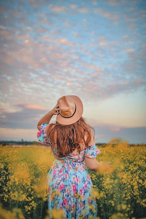 Gratis stockfoto met bloemachtig, bloemen, buiten, eigen tijd
