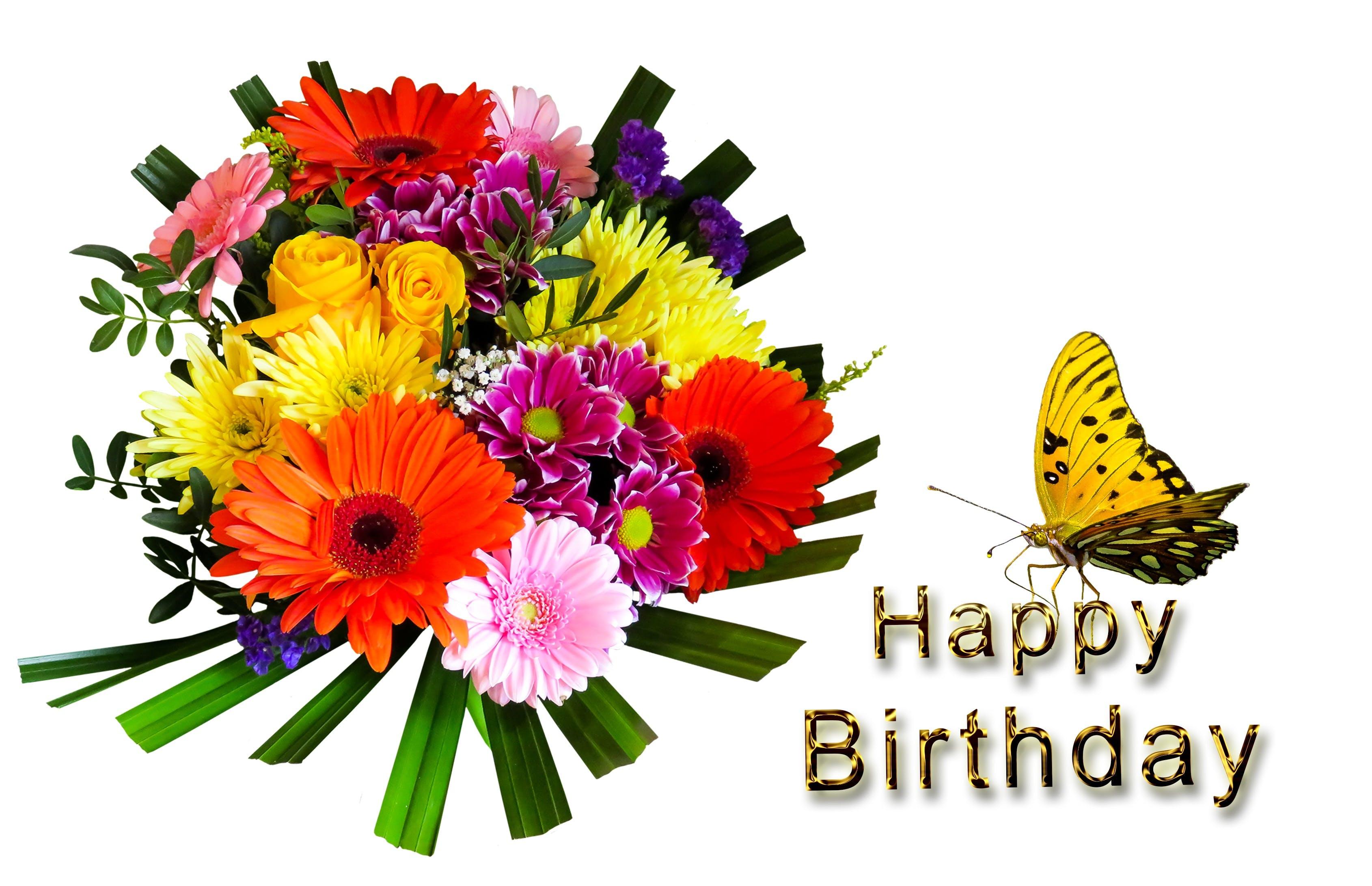 birthday, birthday bouquet, birthday card