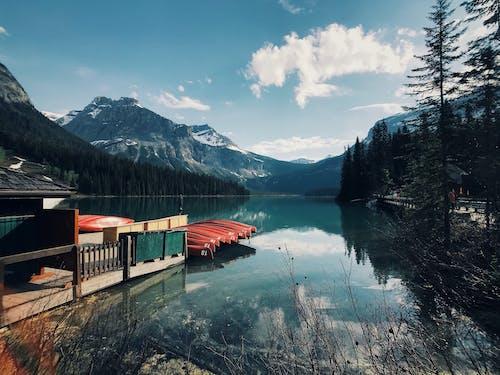 カナダ, カヌー, ドック, フィヨルドの無料の写真素材