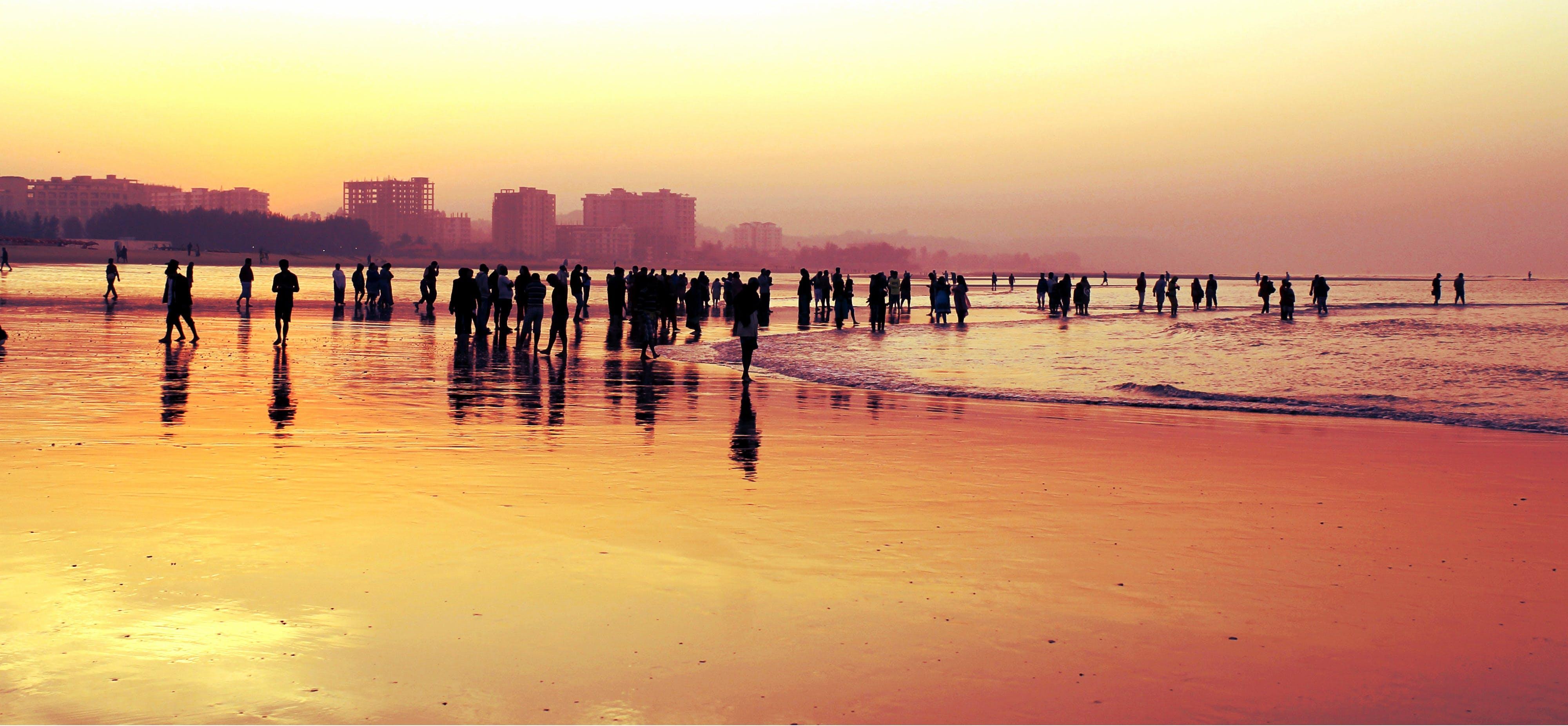 Free stock photo of sea, sunny, man, person