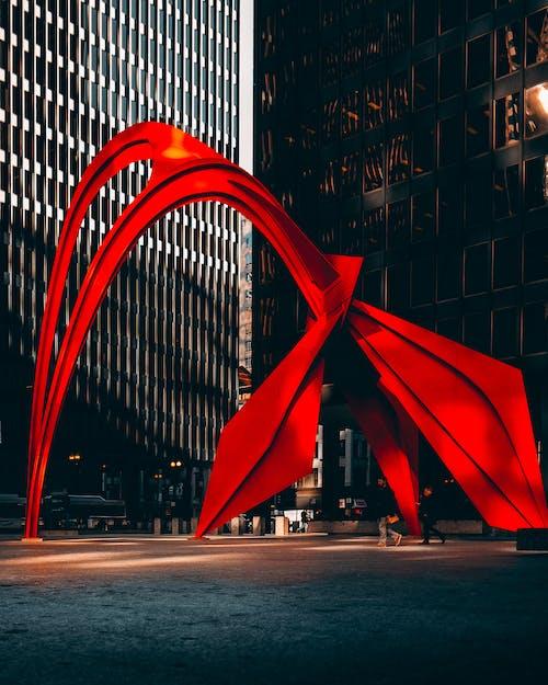 Fotobanka sbezplatnými fotkami na tému červená, Chicago, flamingo kaldera, ľahký