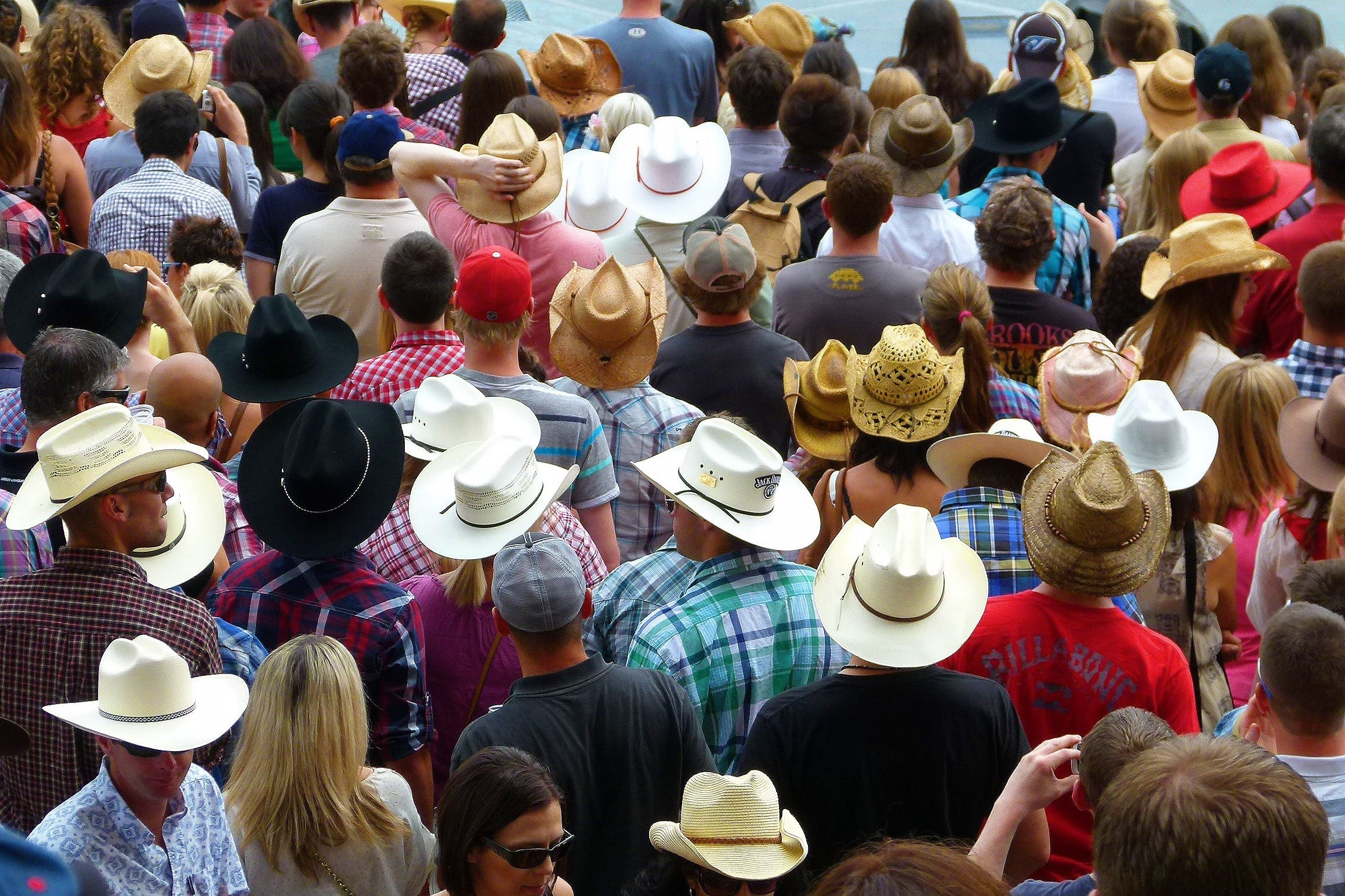 Free stock photo of Calgary, canada, crowd, hats