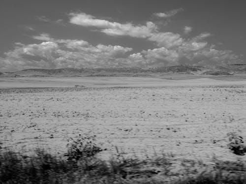 平面, 景觀, 風景, 黑與白 的 免費圖庫相片