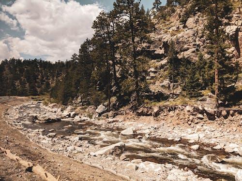 山, 懸崖, 樹木, 河 的 免費圖庫相片