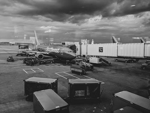 貨物, 跑道, 飛機, 飛機場 的 免費圖庫相片