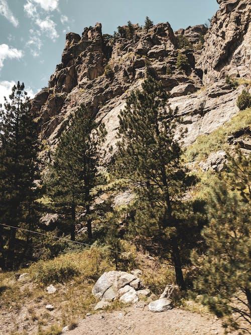山, 岩石, 懸崖, 樹 的 免費圖庫相片