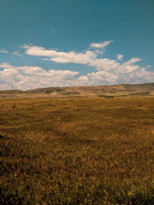 打開, 景觀, 風景 的 免費圖庫相片