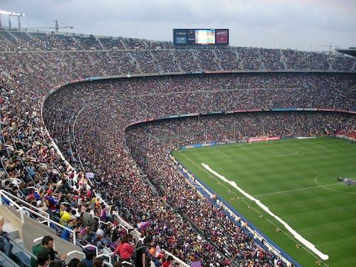 世界杯, 人, 人群, 匹配,配对,适合 的 免费素材照片