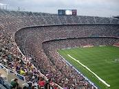 people, field, crowd