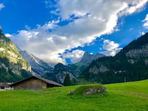 bulut, çıkmak, çim, çim saha içeren Ücretsiz stok fotoğraf