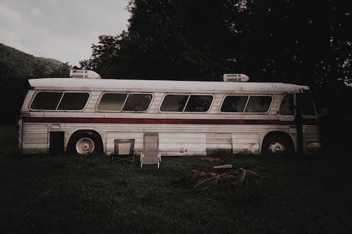 公車, 山, 巴士, 復古 的 免費圖庫相片