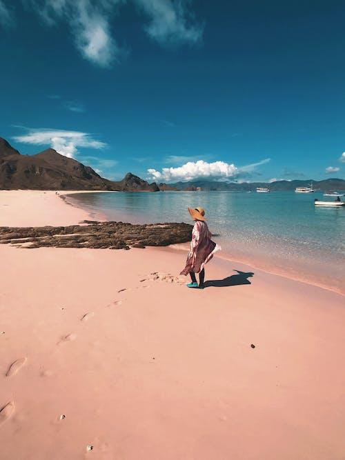 Бесплатное стоковое фото с океан, пейзаж, пляж, розовый