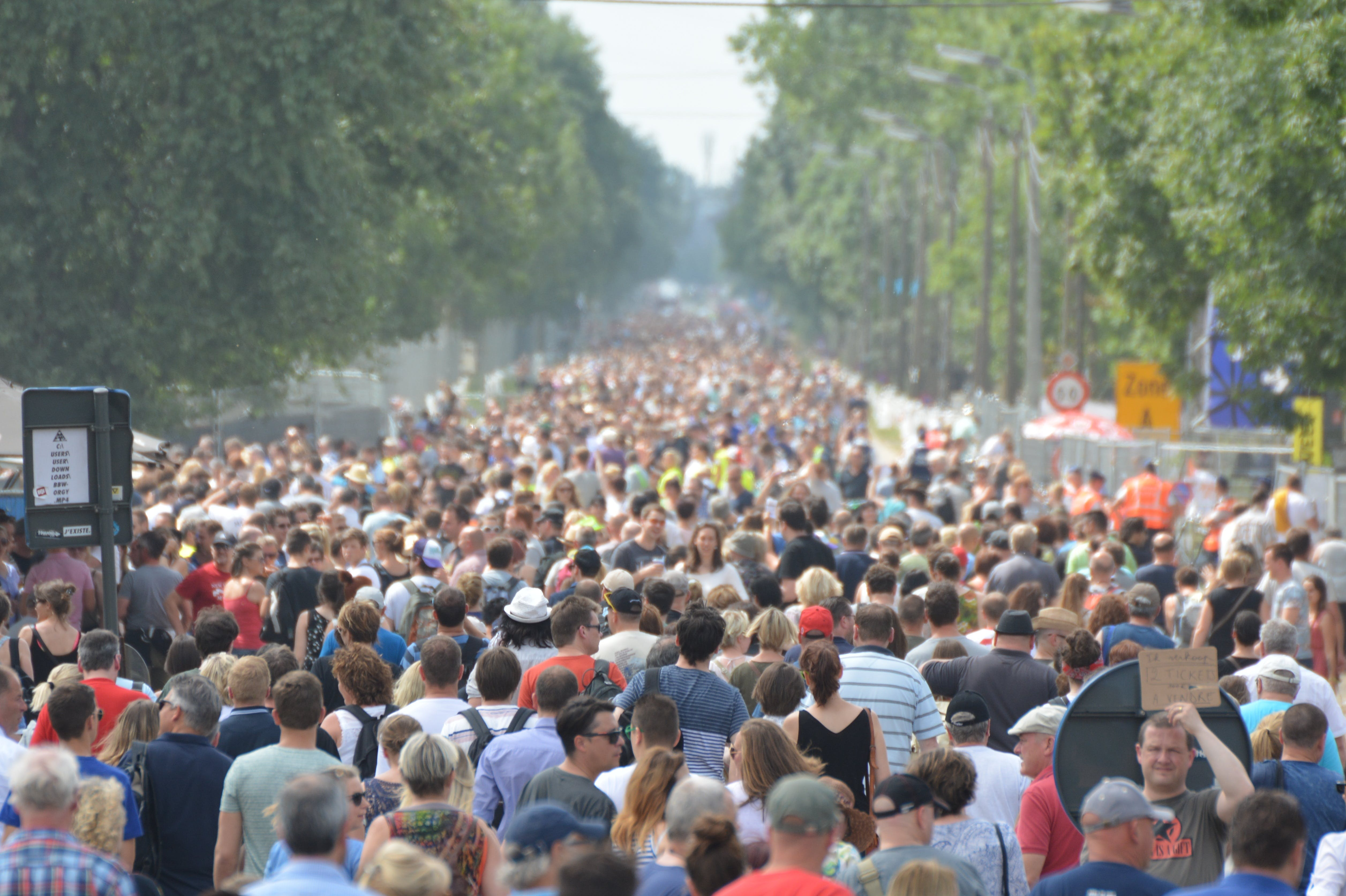 Free stock photo of people, crowd, mass, group of people