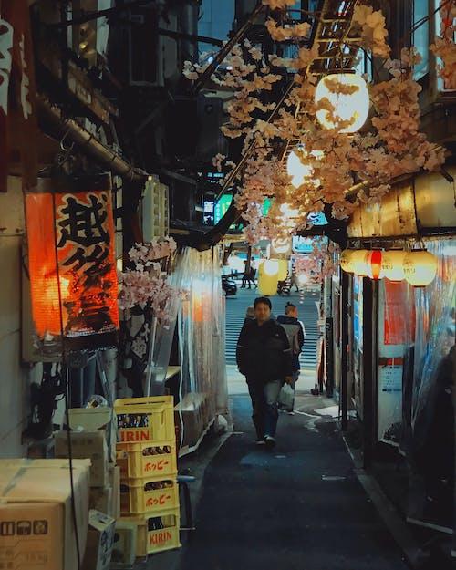 さくら, バー, 夜の写真, 日本の無料の写真素材
