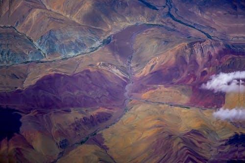 Gratis lagerfoto af naturens farver
