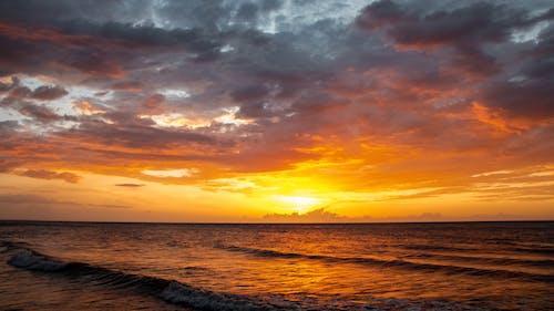 Foto d'estoc gratuïta de aigua dolça, bonic capvespre, platja