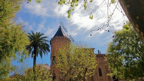 Gratis arkivbilde med antonio gaudi, barcelona, barcelona monument, barcelona park