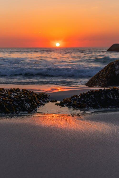 Free stock photo of beach, beach front, iphone wallpaper, lock screen wallpaper