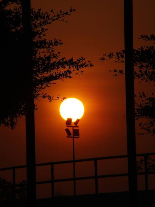 Free stock photo of silhouette, sun light, sunset