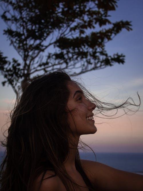 Foto d'estoc gratuïta de arbre, bonic, cabell, capvespre