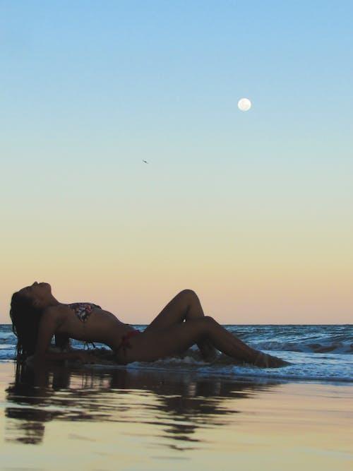 Free stock photo of beach, evening sun, moon