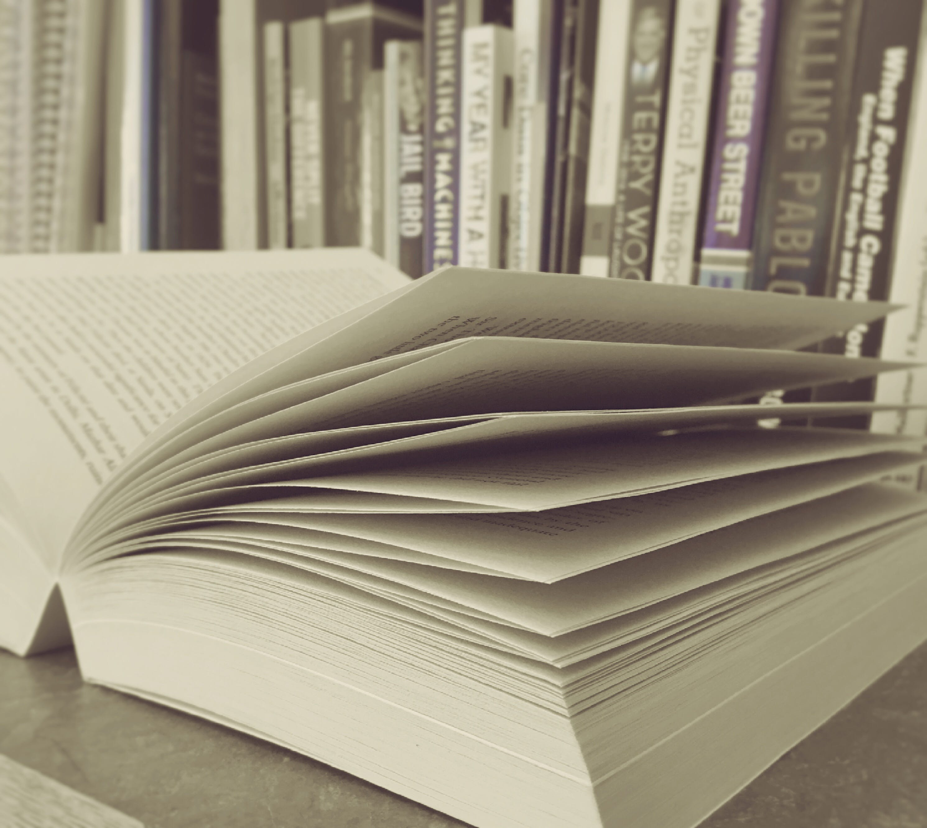 Free stock photo of white, research, book, document