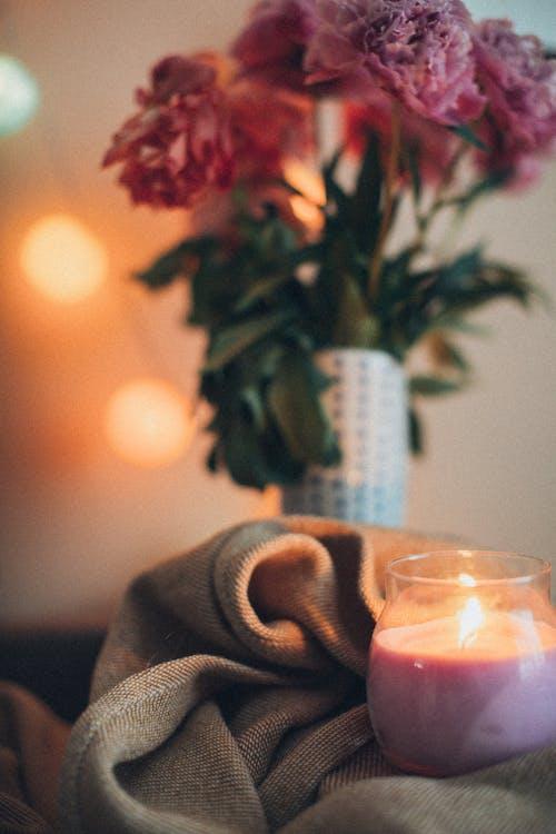 Imagine de stoc gratuită din aranjament floral, bokeh, concentrare, floră
