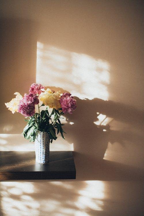 Rosa Und Weiße Blumen Auf Vase