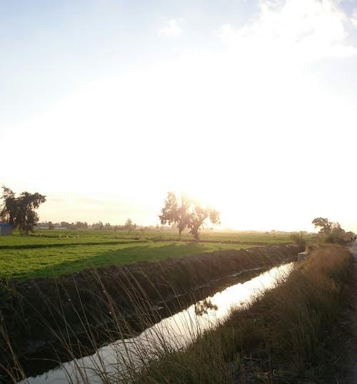 Безкоштовне стокове фото на тему «# три, #canal, #захід сонця»