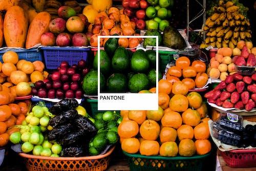 グレープフルーツ, スーパーマーケット, トロピカルフルーツ, バスケットの無料の写真素材