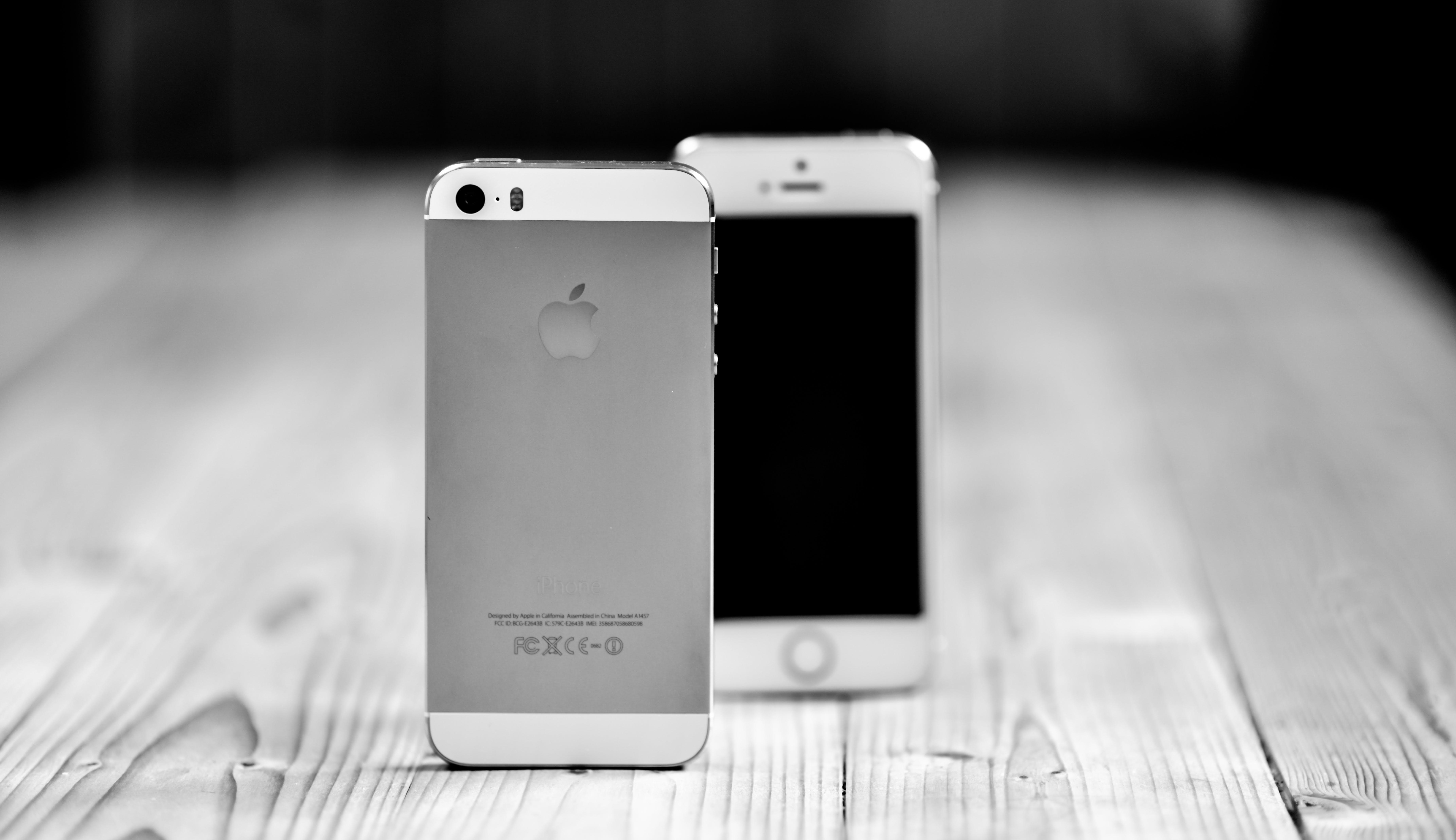 Fotos de stock gratuitas de adentro, apple, blanco y negro, concentrarse