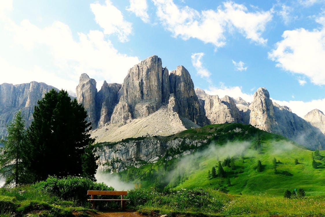 Gray Stone Mountain Near Tree