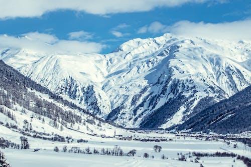 下雪的, 似雪, 健行, 全景 的 免费素材照片