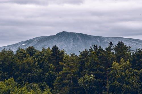 Free stock photo of mountain, scandinavia