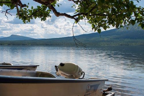 Free stock photo of lake, mountain lake, summer, sweden