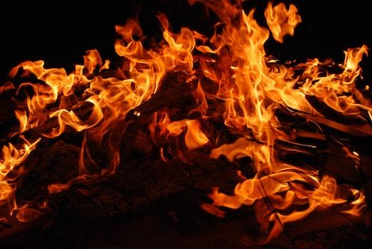 Kostenloses Stock Foto zu brennholz, feuer, heiß, lagerfeuer