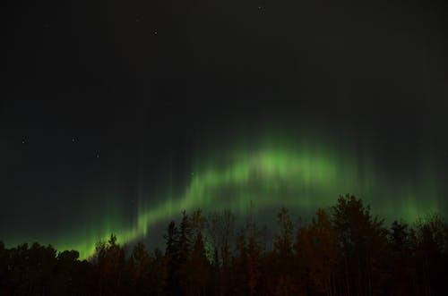 Безкоштовне стокове фото на тему «borealis, Аврора, астрономія, атмосфера»