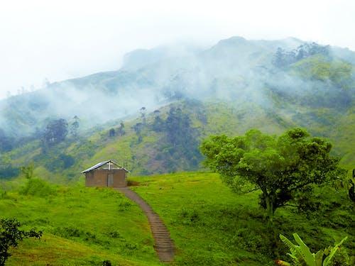 山, 教會, 綠色, 霧 的 免费素材照片